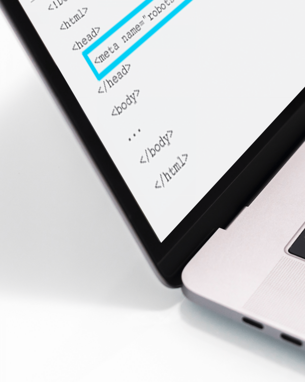 Hoe kan je pagina's laten indexeren door zoekmachines